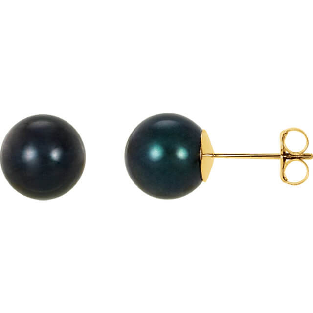 Black Akoya Stud Earrings Yellow Gold